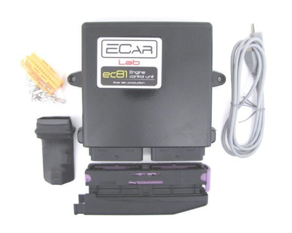 EC81 — Универсальный программируемый ЭБУ ECar lab
